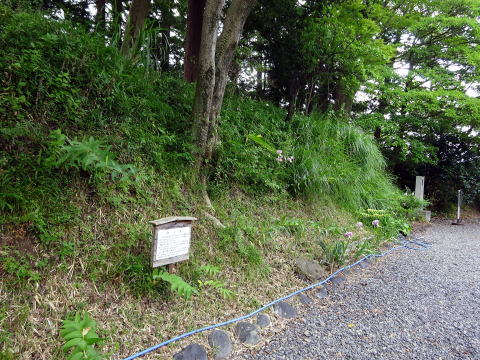 掛川城御殿の土塁