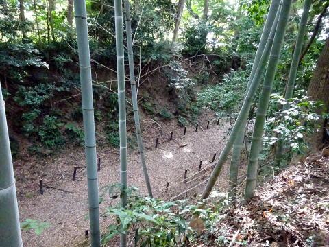 本丸から見た掛川古城の堀